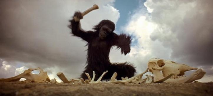 Scimmia-Con-Osso